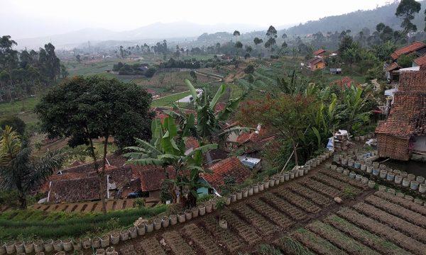 travel_java_indonesia_tips