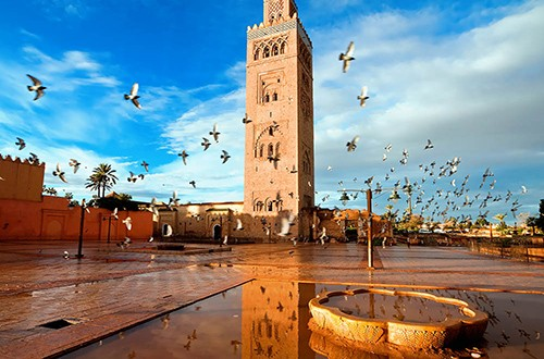 A Useful Guide For Your First Time in Marrakech