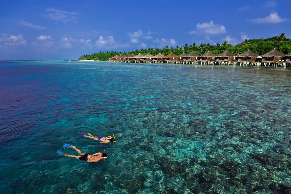 Snorkeling at one of the best resorts in the Maldives