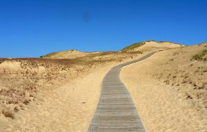 Curonian Spit: one of the best beaches in the world