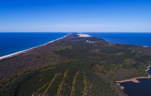 Curonian Spit: one of the top beaches in the world