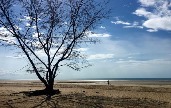 darwin_best_beach_world