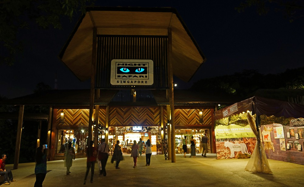 Things to do in Singapore: Singapore's Night Safari