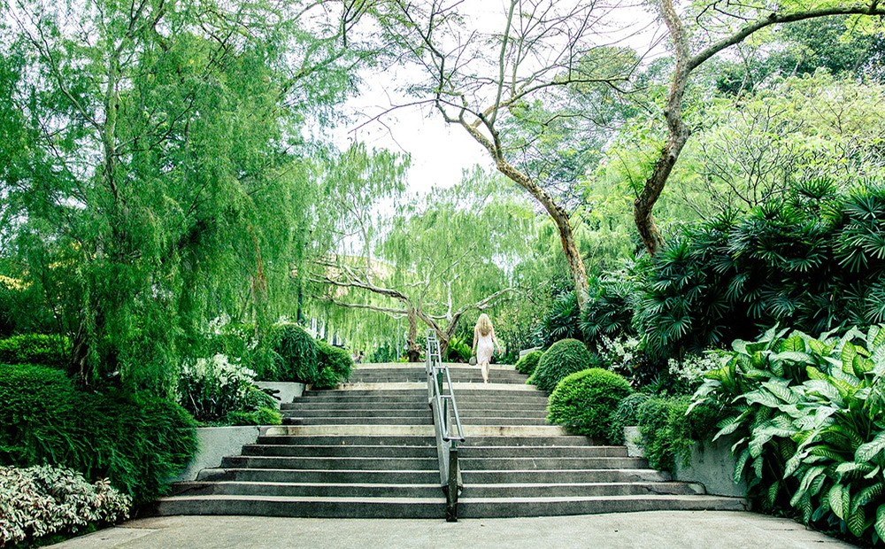 Things to do in Singapore: The Singapore Botanic Gardens