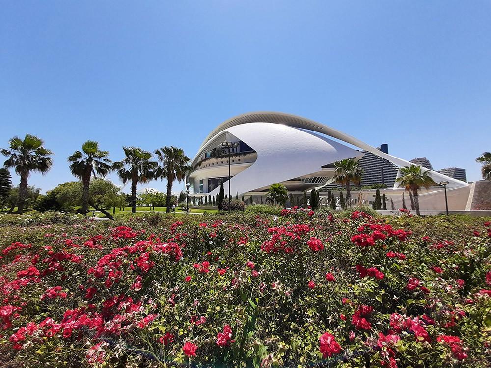 Things to do in Valencia: walk around Turia Park