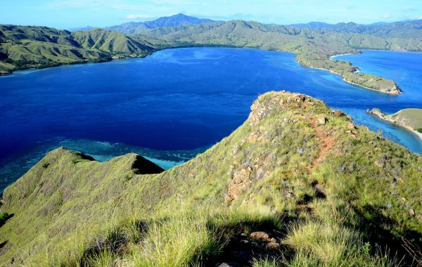 what_not_to_miss_indonesia_komodo