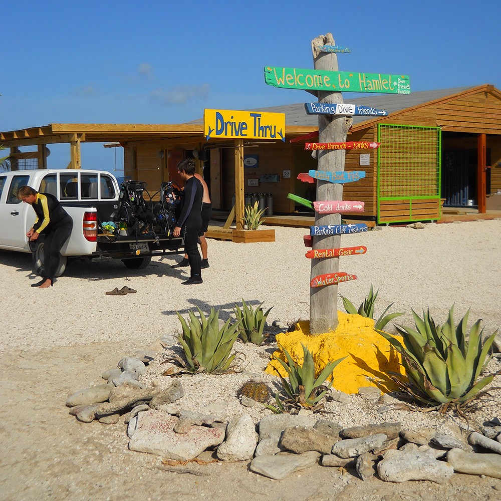 Cliff: one of the best dive sites in Bonaire