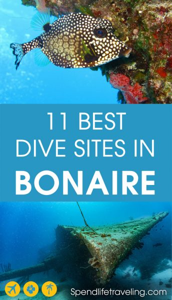 If you love scuba diving then the Caribbean island of #Bonaire is a must visit! With almost 90 different dive sites, many of which are shore dives, it's paradise for divers. These are 11 of the best dive sites in Bonaire. #scuba #diving #traveltips #caribbean #scubadiving