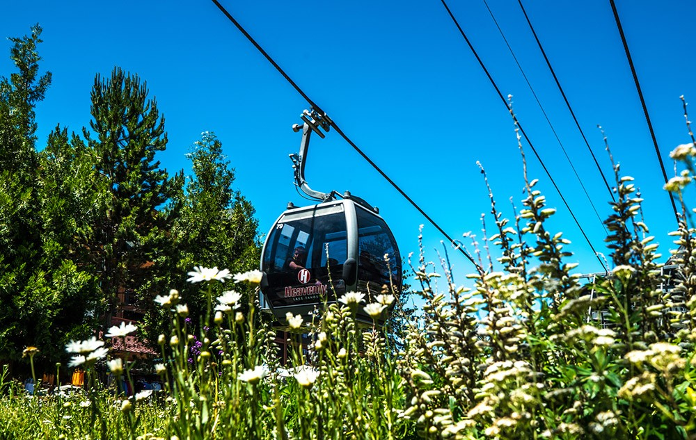 What to do in South Lake Tahoe: take the gondola to Heavenly Ski Resort
