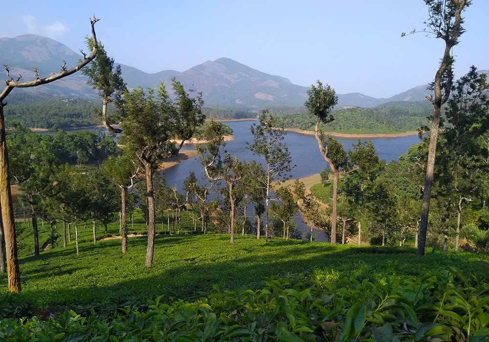 Why visit Kerala? Because of its natural beauty