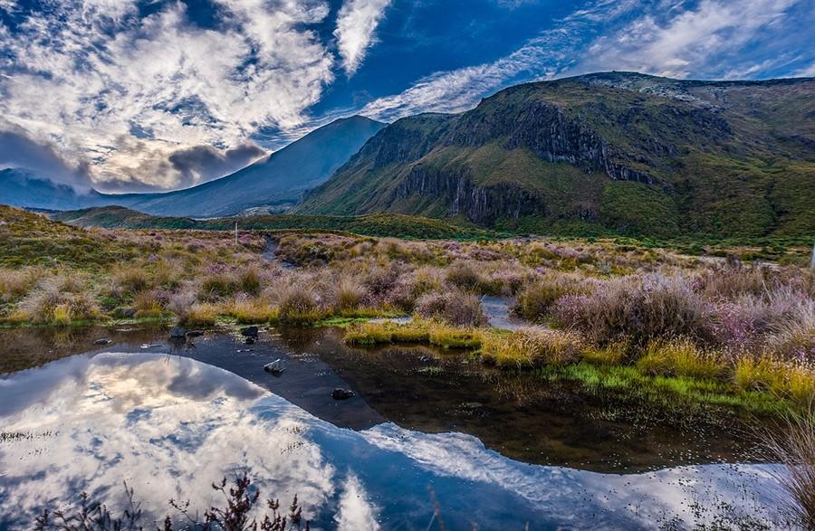 Tongariro - a 7 days North Island itinerary