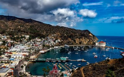 A Perfect Catalina Island Day Trip – the Ultimate Guide