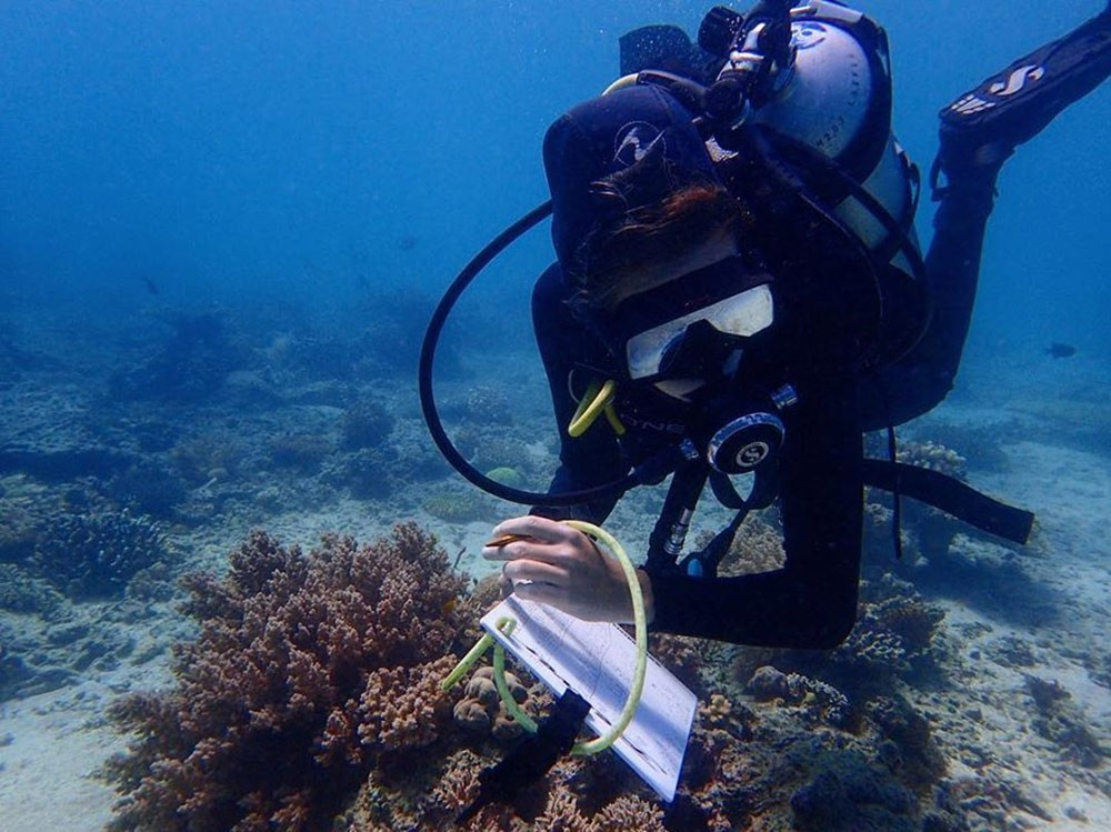 a volunteer at Marine Conservation Philippines