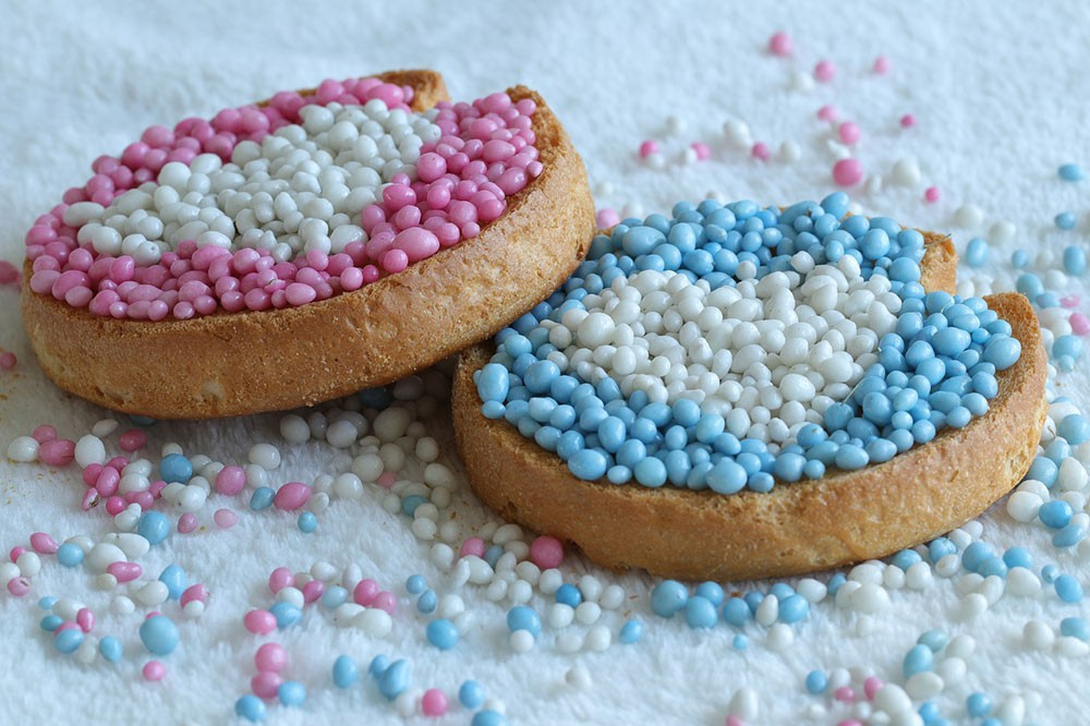 beschuit with pink and blue muisjes